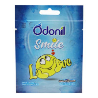 ODONIL SMILE MIAMI DREAM AIR FRESHNER 2 PACKS 1.00 NO