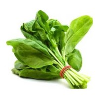 PALAK SPINACH 600 Gms